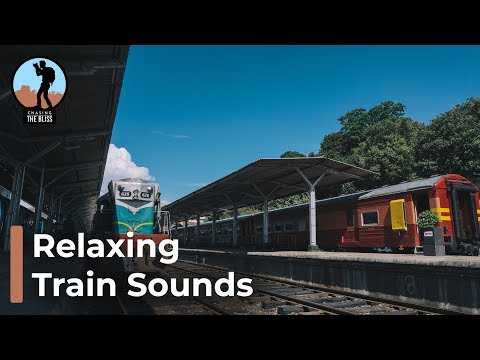 🎧 Relaxing Train Journey Sounds in Sri Lanka Railways - Mind Relaxing Sounds Experience