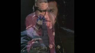 Wキャストのヴォルフガング。中川晃教ヴァージョンの「影を逃れて」