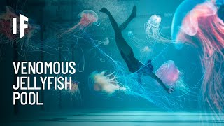 What If You Fell Into a Pool of Jellyfish?