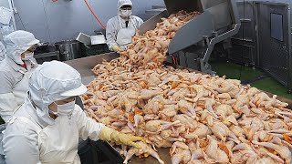Завод по переработке жареной курицы и курицы по-корейски - food factory