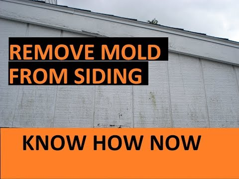 how-to-clean-mold-from-house-wood-siding