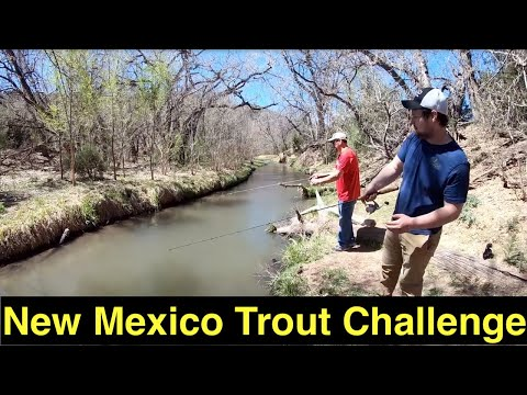 The New Mexico Trout Challenge