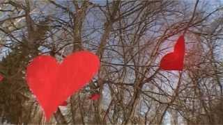 Мелодия весны (свадебная прогулка)