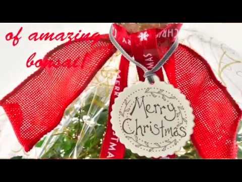 Christmas Bonsai Tree Gifts 2016