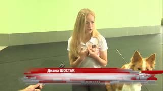 В Ярославской области сегодня прошла аттестация собак-терапевтов