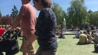 Nytorget, Sveriges nationaldag den 6 juni 2017