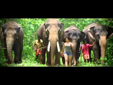 Incredible India Tourism - Pathanamthitta, Kerala, India