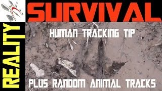 Human Tracking Tip + Random Animal Tracks