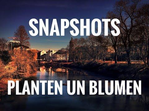 Planten un Blumen - Walking Tour, Hamburg, Germany