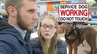 BLACK FRIDAY SERVICE DOG CHALLENGE! (11.24.16)