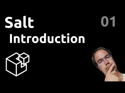 SALT - 01. Introduction