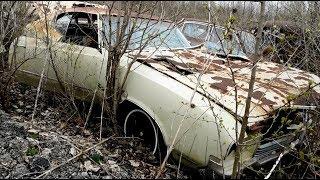 Junk Yard Finds Special: A forgotten Junk Yard