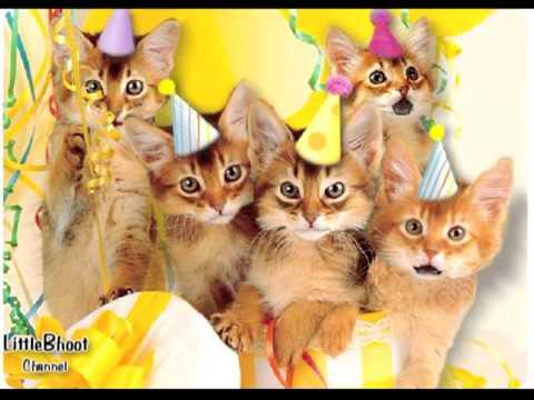 Happy Birthday Meaw