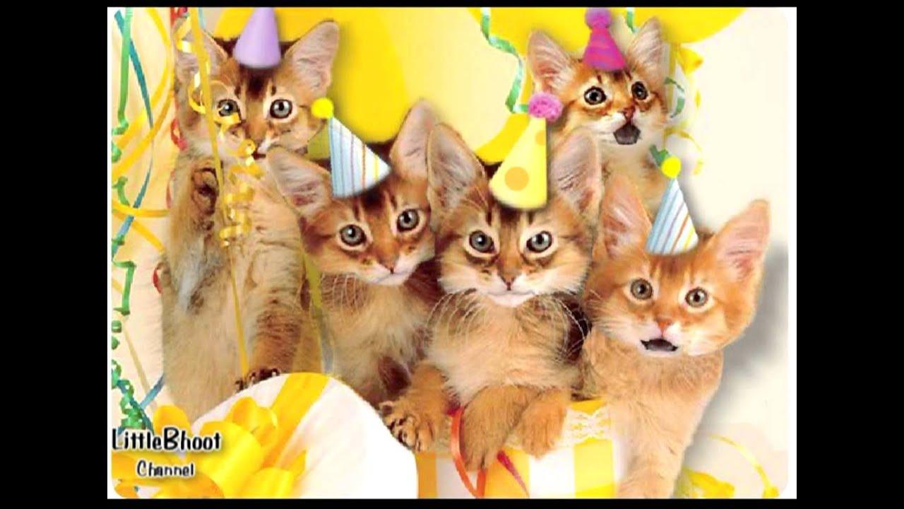 Happy Birthday Meaw Youtube