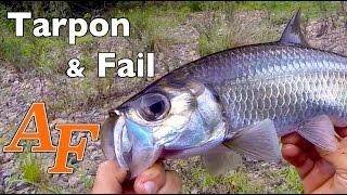 Jungle Tarpon Fish with a Mega Fail Andysfishing Andy
