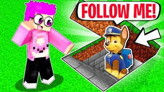 We Discover PAW PATROLS SECRET UNDERGROUND BASE In MINECRAFT! (LankyBox Minecraft Movie!)