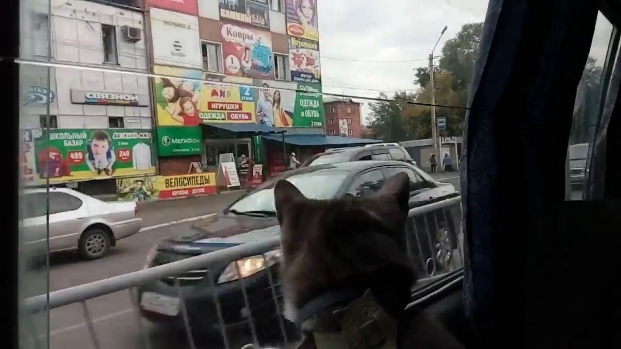 Республика Алтай. В дороге. Горно-Алтайск