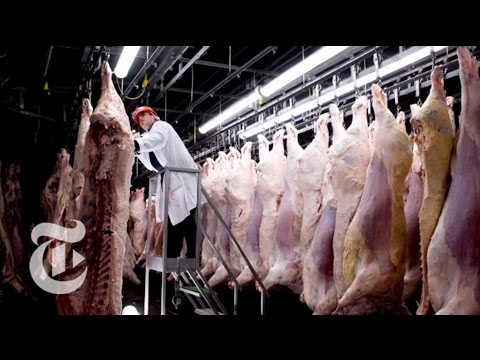 Chasing Outbreaks: How Safe Is Our Food? | Retro Report | The New York Times