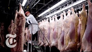 Chasing Outbreaks: How Safe Is Our Food?   Retro Report   The New York Times