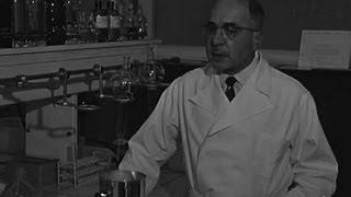 Les laboratoires lyonnais , 2ème partie