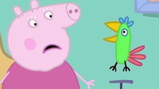 Peppa Pig Français Polly! | Dessin Animé Pour Enfant