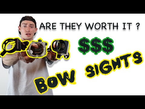 CHEAP Vs. EXPENSIVE BOW SIGHTS
