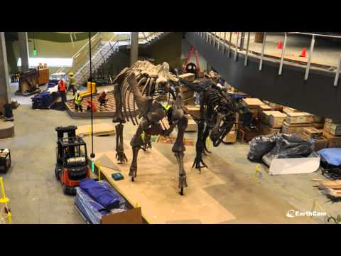 Official Perot Museum of Nature and Science Construction Time-Lapse