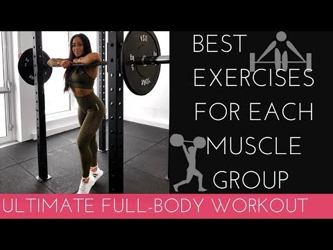 MY FAV EXERCISES FOR EACH MUSCLE GROUP ULTIMATE FULL BODY WORKOUT!