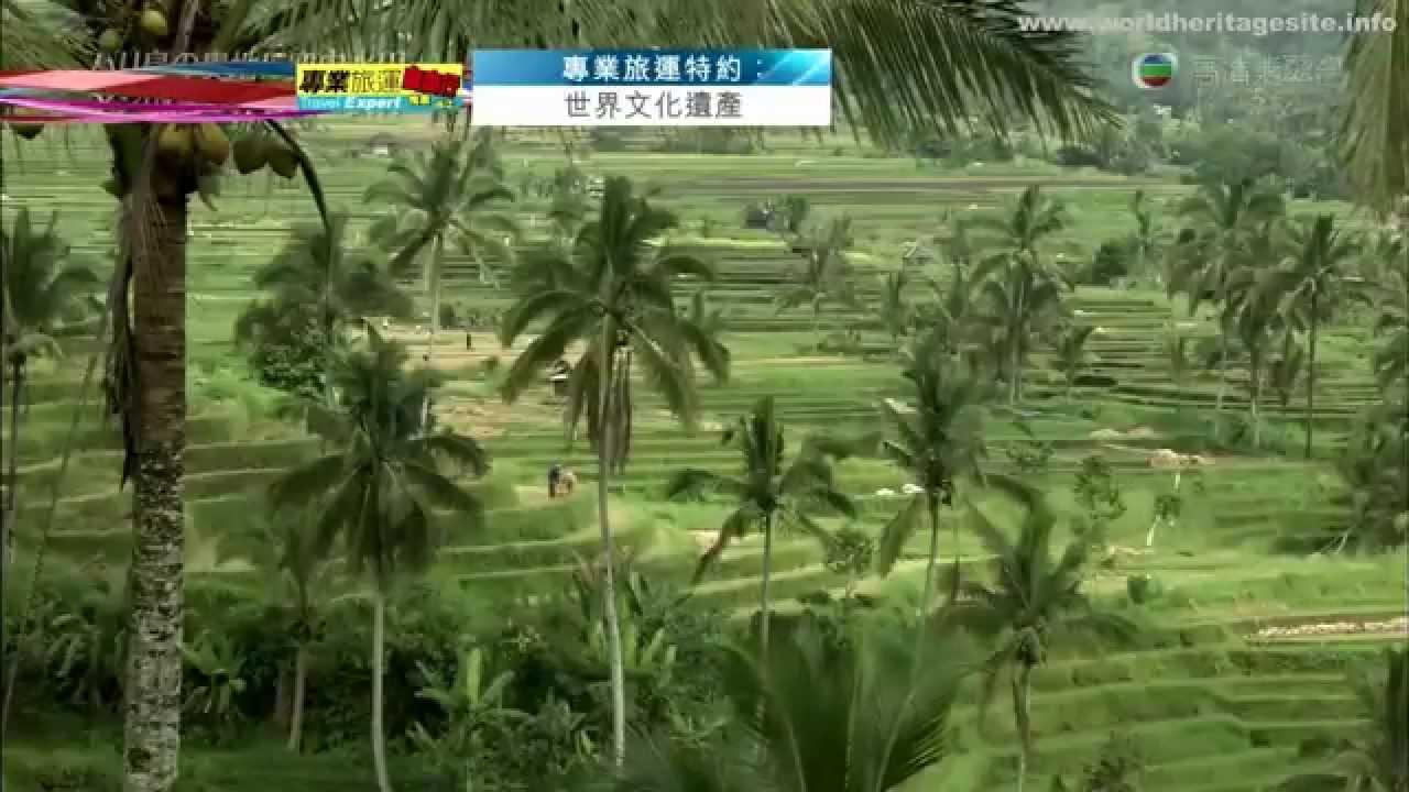[Cantonese] Indonesia Cultural Landscape of Bali Province the Subak System 印尼世界遗产 巴厘省的文化景观 苏巴系统