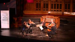 Brahms, Clarinet Quintet in B Minor, Op. 115, first movement