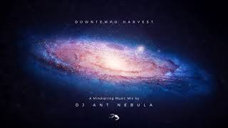 Downtempo Harvest: Mindspring Music Mix by DJ Ant Nebula