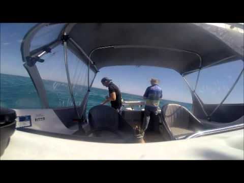 South Australia Whiting Fishing
