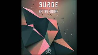 Official - Surge & Organum - Follow The Light (Spin Twist Records)