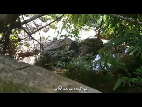 Video Singkat Wisata Di Aceh Barat Daya, Pemandian Alue Sungai Pinang