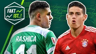 Fakt ist..! Bayern holt Dortmund ein! Doppelter Rashica! Bundesliga Rückblick 25. Spieltag 18/19