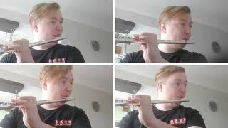 Артист Губернаторского симфонического оркестра С.Завьялов