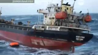 Морская планета Документальный фильм 2015 смотреть онлайн  Моя планета