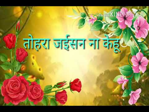 Dil Bhail Deewana Tohra Pyar Mein,  heart toching whatsapp status in bhojpuri 2018