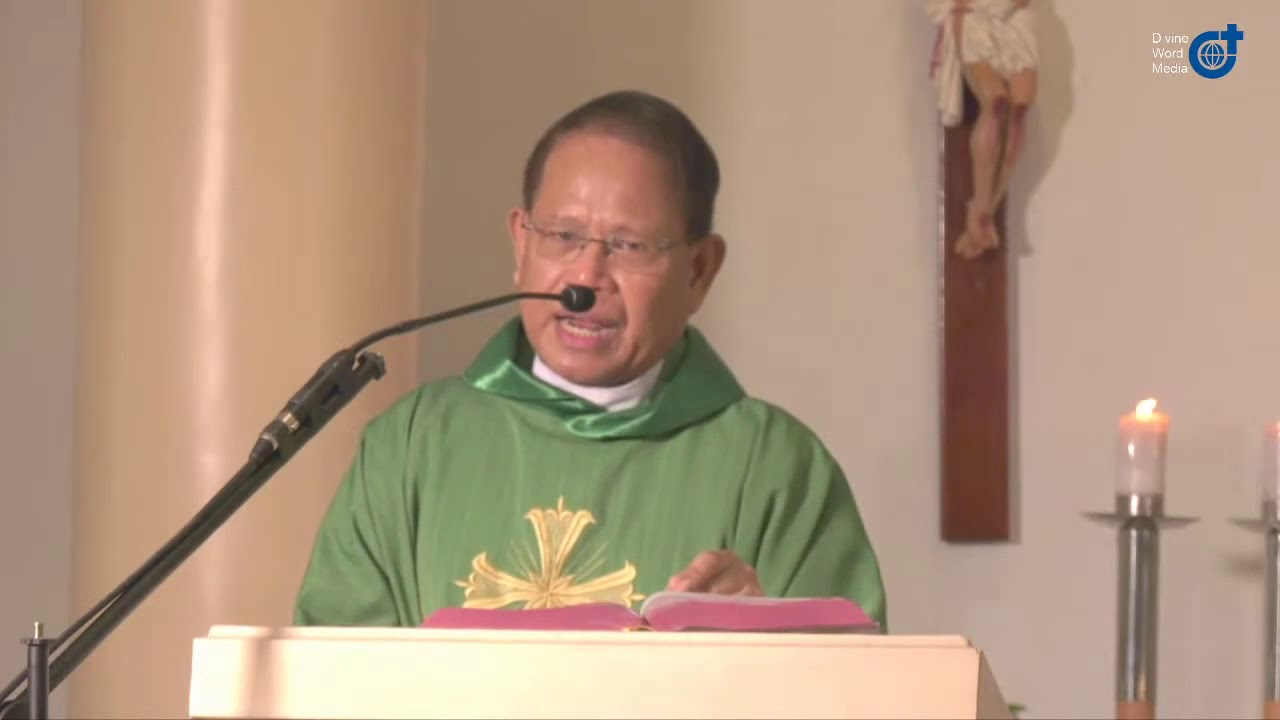 Homily on Tuesday 14th Week in Ordinary Time By Fr Melchor Bernal SVD  - July 7, 2020
