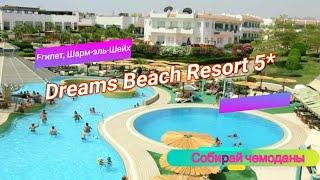 Отзыв об отеле Dreams Beach Resort 5 Египет Шарм эль Шейх