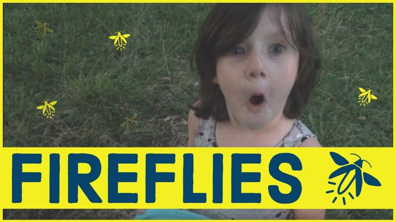 Catching Fireflies Lightning Bugs Kids Exploring Nature