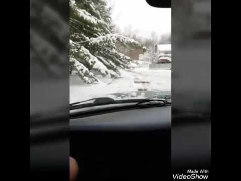 Tragic Taco Truck Accident