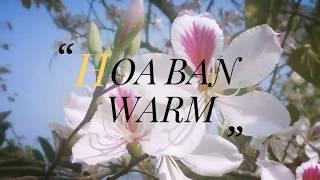 Vợ yêu mắng sợ tí vỡ mật - suốt ngày đi- travel tour vietnam - HBW