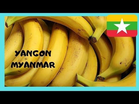 MYANMAR: THE INCREDIBLE