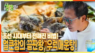 [2TV 생생정보] 조선 시대부터 전해진 비법! 얼큰함의 끝판왕, 우럭매운탕! | KBS 211011 방송