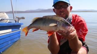 Burrendong Fishing Classic 2018