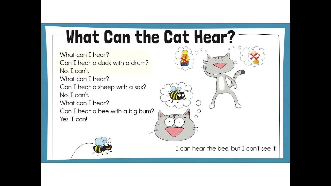 Worksheet Reading Practice kids reading practice story 6 what can the cat hear trw readers 2