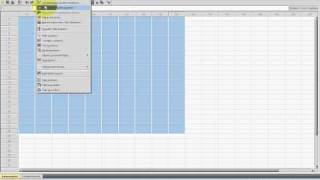 SPSS Video-Seminar #  Teil 2: Dateneingabe -- SPSS Oberfläche