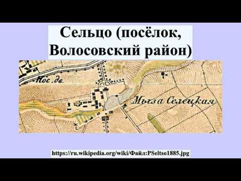 Сельцо (посёлок, Волосовский район)