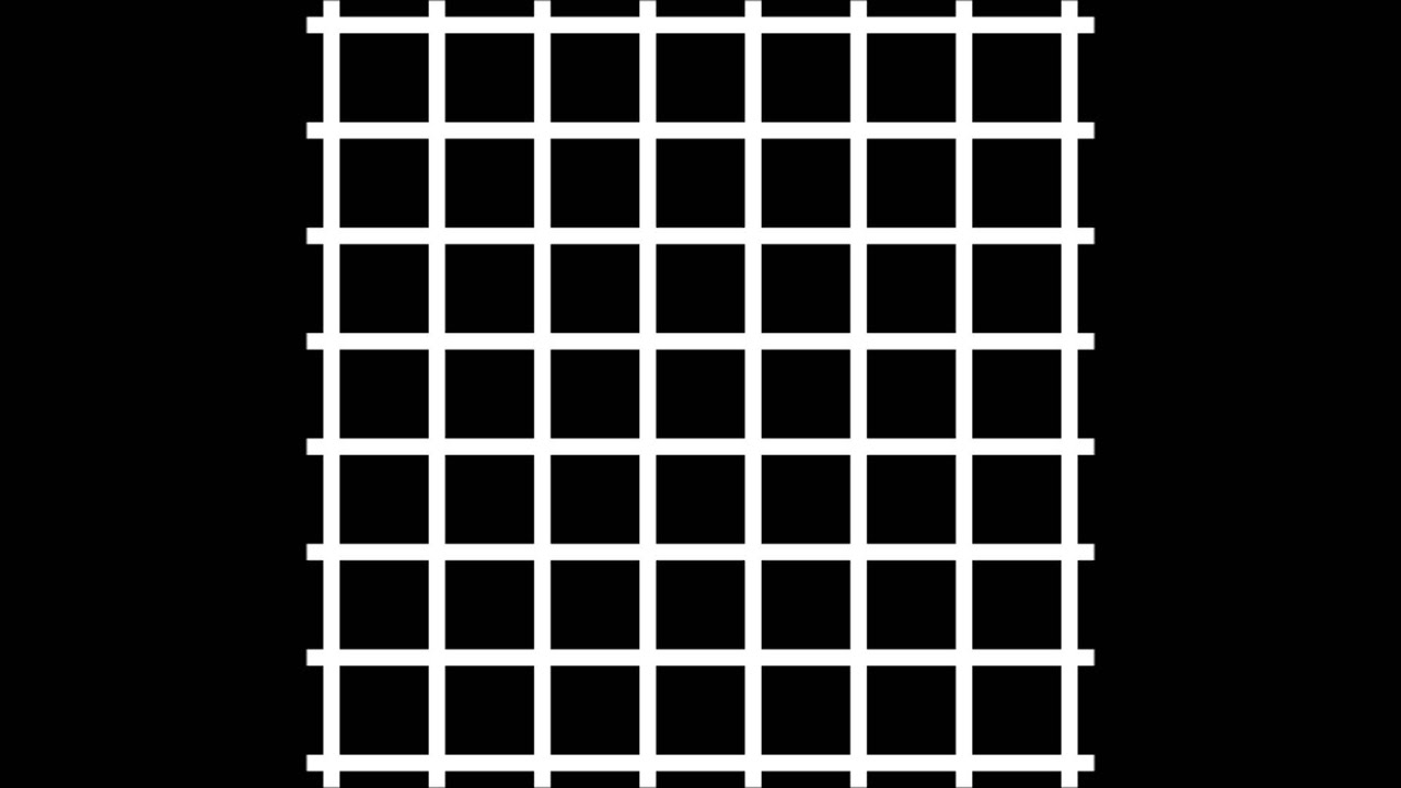 the hermann grid illusion revisited The hermann grid illusion consists of smudges perceived at the intersections of a  white grid presented on a black background in 1960 the effect was first.